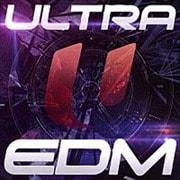 ウルトラ EDM (2枚組 ディスク2)