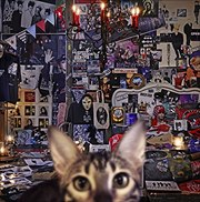 CATALOGUE 1987-2016 [SHM-CD] (2枚組 ディスク2)