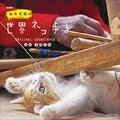 NHK「岩合光昭の世界ネコ歩き」ORIGINAL SOUNDTRACK 2