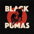 BLACK PUMAS (DELUXE) (2枚組 ディスク1)