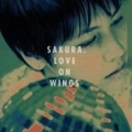 LOVE ON WINGS