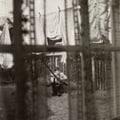 ケイオス・アンド・クリエイション・イン・ザ・バックヤード〜裏庭の混沌と創造 (CCCD)