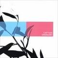 【CDシングル】ORDINARY