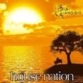 ハウスネイション-ピアノ・ギグ