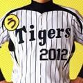 うたイガース!!阪神タイガース選手登場曲集2012