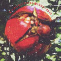 エンケンロックベスト盤 1996〜2012 [SHM-CD]