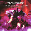 THE IRONHEARTED FLAG Vol.2:REFORMATION SIDE [限定盤]