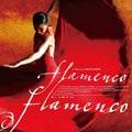 映画「フラメンコ・フラメンコ」オリジナル・サウンドトラック