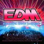 EDM〜エレクトロニック・ダンス・マッドネス2〜