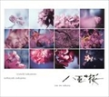 NHK大河ドラマ「八重の桜」オリジナル・サウンドトラック コンプリート盤 (2枚組 ディスク2)