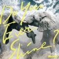 【CDシングル】Do You Ever Shine?
