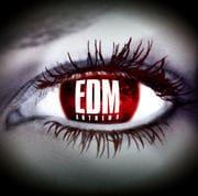 EDM アンセム II