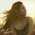 【CDシングル】Milestone