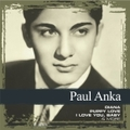 はじめてベスト ポール・アンカ