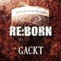 RE:BORN (2枚組 ディスク1)