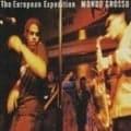 THE EUROPEAN EXPERIENCE