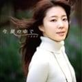 【CDシングル】今、風の中で