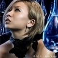 【CDシングル】愛のうた