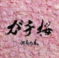 【CDシングル】ガチ桜