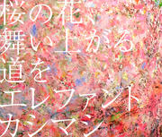 【CDシングル】桜の花、舞い上がる道を