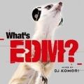 WHAT'S EDM? MIXED BY DJ KOMORI