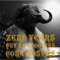 ZERO YEARS〜CUT UP GROOVIES〜