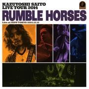 KAZUYOSHI SAITO LIVE TOUR 2014 Rumble Horses Live at ZEPP TOKYO 2014.12.12 (2枚組 ディスク2)