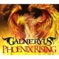PHOENIX RISING SPECIAL BONUS LIVE CD(2枚組 ディスク2)