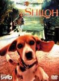 ビーグル犬シャイロ −特別版−
