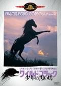 ワイルド・ブラック 少年の黒い馬