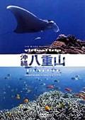 virtual trip 沖縄八重山 Diving View