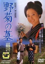 野菊の墓 (松田聖子主演)