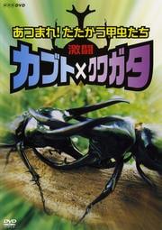 激闘 カブト×クワガタ あつまれ!たたかう甲虫たち