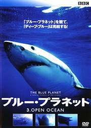 ブルー・プラネット 3 OPEN OCEAN