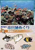 海洋紀行・竜宮城めぐり 珊瑚礁のワルツ