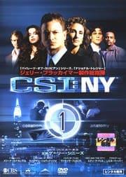 CSI:NY Vol.1