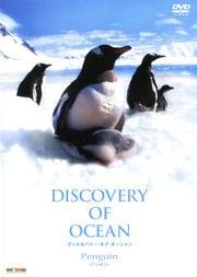 Discovery of Ocean-ディスカバリー・オブ・オーシャン- Penguin(ペンギン)