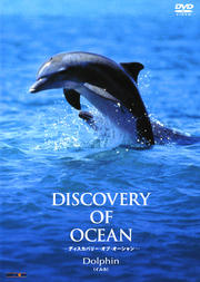Discovery of Ocean-ディスカバリー・オブ・オーシャン- Dolphin(イルカ)