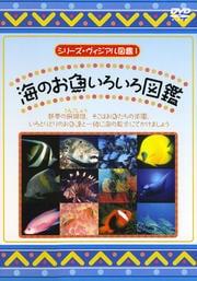 シリーズ・ヴィジアル図鑑 1 海のお魚いろいろ図鑑