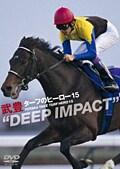 """武豊/ターフのヒーロー15 """"DEEP IMPACT"""""""