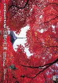 virtual trip 京都の紅葉
