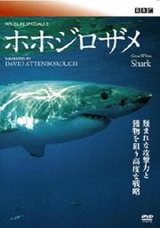 BBC ワイルドライフ・スペシャルII ホホジロザメ