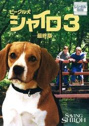 ビーグル犬シャイロ3 -最終章- 特別版