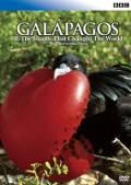 BBC ガラパゴス II. 進化論が生まれた島