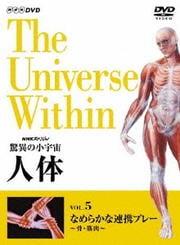NHKスペシャル 驚異の小宇宙 人体 5 なめらかな連携プレー 〜骨・筋肉〜