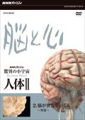 NHKスペシャル 驚異の小宇宙 人体II 脳と心 第2集 脳が世界をつくる〜知覚〜