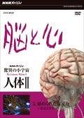NHKスペシャル 驚異の小宇宙 人体II 脳と心 第5集 秘められた復元力〜発達と再生〜