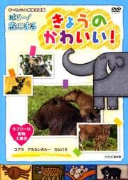 ダーウィンの動物大図鑑 はろ〜!あにまる きょうのかわいい! ラブリーな動物大集合 コアラ・カピバラ・アカカンガルー