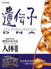 NHKスペシャル 驚異の小宇宙 人体III 遺伝子・DNA 第3集 日本人のルーツを探れ 〜人類の設計図〜