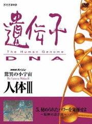 NHKスペシャル 驚異の小宇宙 人体III 遺伝子・DNA 第5集 秘められたパワーを発揮せよ 〜精神の設計図〜